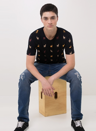 Camiseta Lhamas